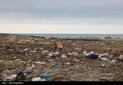ببینید | تصاویری زشت و زننده از ساحل دریای خزر