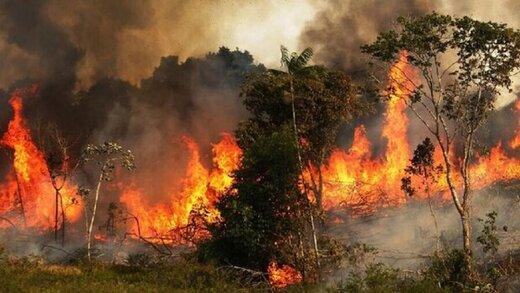 آتشسوزی گسترده در کارگاه تولید مبلمان