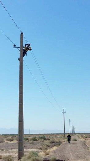 بهینه سازی ۱۱ هزار متر شبکه فشار متوسط در شهرستان شاهرود