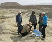 """آغاز مطالعات اکتشافی و زمین شناسی در شهرستان """"بن"""""""