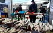 کرونا قیمت ماهی را پایین آورد