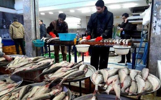 هر کیلو قزلآلا در بازار ۳۸ هزار تومان قیمت پیدا کرد
