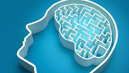 هوش خود را امتحان کنید/ فقط یک نابغه میتواند این ۷ معمای چالشی را در ۳۰ ثانیه حل کند!