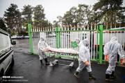 نیمی از قربانیان کرونایی در بهشت زهرا تدفین میشوند