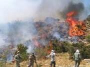 اعزام یک فروند بالگرد هلال احمر به ارتفاعات افزر؛ آتش همچنان زبانه میکشد 
