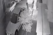 ببینید | لحظه سرقت شبانه از خانه زن تهرانی در شهرک قصر فیروزه