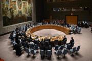 بعیدی نژاد در واکنش به تصمیم شورای امنیت: ختم جلسه!