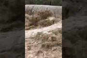 ببینید | سیلاب وحشتناک روستای گورناک شهرستان سرباز بر اثر باران های موسمی