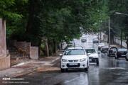 باران جادههای این ۳ استان را خیس کرد