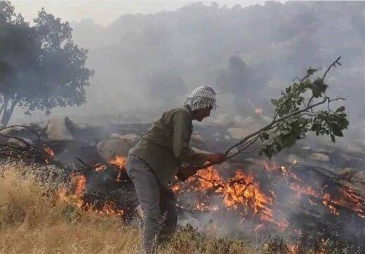 تداوم آتش سوزی در ارتفاعات کوه دلا اندیکا