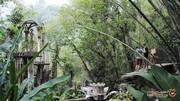 منطقه جنگلی لاس پوزاس و سازه های عجیبی که در آن پنهان شده اند!