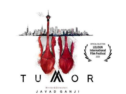 «تومور» ایرانی نامزد بهترین فیلم جشنواره سوری شد