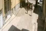 ببینید | سرقت ۵ثانیهای موتورسیکلت توسط دو پسربچه