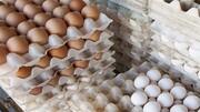 وزیر جهاد کشاورزی: بازار تخممرغ تا ۳ روز آینده متعادل میشود