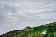 تصاویر | دریای ابر در ارتفاعات فیلبند مازندران