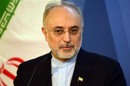 Lifting of sanctions, Iran's logical demand: Salehi