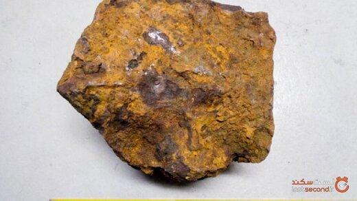 مردی آلمانی بزرگترین شهاب سنگ دیده شده را در باغچه خانه اش کشف کرد!