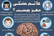 اینفوگرافیک   علائم خشکی مغز چیست؟