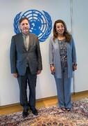 دیدار بهاروند با مدیرکل دفتر سازمان ملل در وین