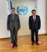 بهاروند با مدیرکل سازمان توسعه صنعتی ملل متحد دیدار کرد