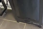 ببینید | سطل زبالهای که آشغالها را میبلعد