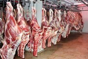 وعده کاهش قیمت گوشت در بازار/ لاشه گوسفندی کیلویی ۹۰ هزار تومان
