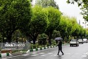 هوای ایران پاییزی میشود/ رگبار باران و کاهش دما در بیشتر استانها