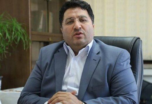 معاون وزیر صمت: تولیدکنندگانی که قیمت مصوب گرفتهاند،حق افزایش قیمت ندارند