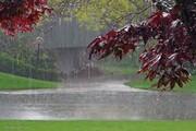 هواشناسی: استانهای شمال کشور خنک میشوند
