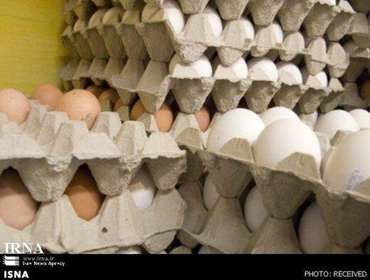 دلیل گرانتر بودن تخم مرغ های قهوه ای را ببینید