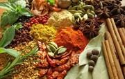 پیشنهادهای طب ایرانی برای ایام کرونایی/ زنجبیل و آویشن و گل سرخ کاشان و ... مصرف کنید