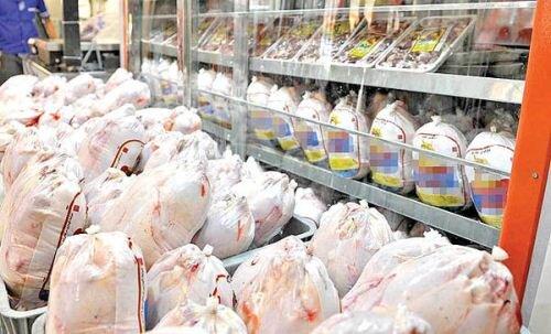 ضرورت ثبات بازار مرغ و تخممرغ در قزوین