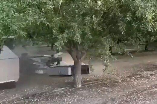 ببینید   برداشت میوههای درختی در چند ثانیه!