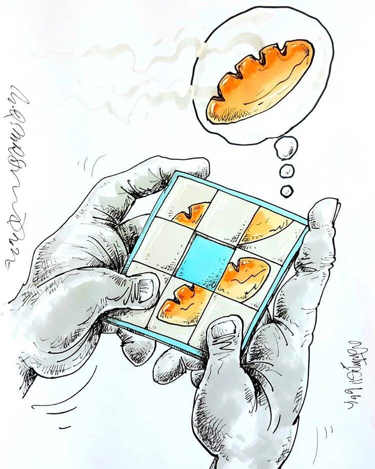 ببینید: بازی نان!