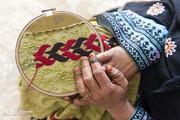 ابتکار: ۳۶ تا ۳۸ درصد از طرحهای روستایی را زنان روستا دریافت کردهاند