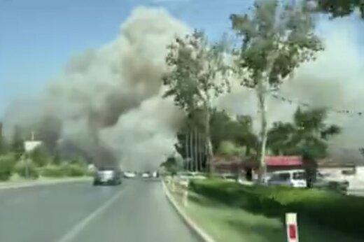 ببینید   آتشسوزی جنگلی در جنوب ترکیه، مناطق مسکونی را نیز به کام خود کشید