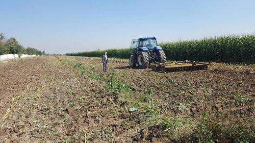 بارقه های جهش تولید در مزارع کرج