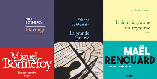 اعلام نامزدهای نهایی «جایزه بزرگ رمان آکادمی فرانسه»