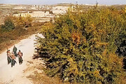 ببینید | مشاهده تروریستهای تکفیری در نزدیکی مرزهای ایران
