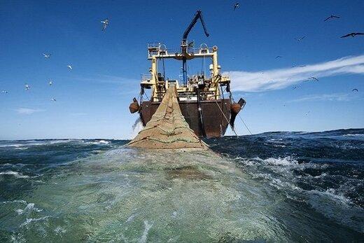 ببینید | جزئیات ممنوعیت صید ترال