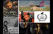 حضور پررنگ سینمای ایران در جشنواره تالین