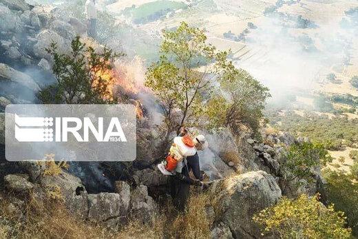 آتش به جان بلوطزارهای شمال خوزستان افتاد