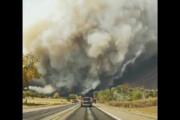 ببینید | آتش سوزی مهیب در جنگلهای ایالت کلرادو آمریکا