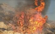 آتش سوزی جنگلهای کوه«نیر» کهگیلویه و بویراحمد پس از ۶ روز مهار شد