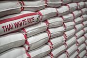 برنج خارجی از ابتدای امسال چقدر گران شد؟