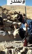 دستگیری متخلف زیست محیطی از طریق رصد فضای مجازی در شهرستان ازنا