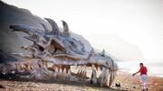 عجیب ترین چیزهایی که تاکنون در سواحل پیدا شده اند! +تصاویر