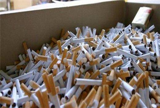 هشدار افزایش مصرف دخانیات بین دختران جوان / تلفات دخانیات بیشتر از کرونا است