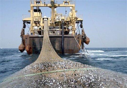 افزایش ۷۱ کشتی صید ترال در ۵ سال اخیر