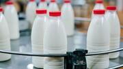 موج جدید افزایش قیمت لبنیات/ چرا شیر خام با نرخ مصوب به صنایع لبنی نمیرسد؟